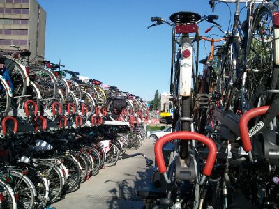 bicycles, lots of bicycles, at the train station