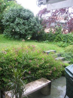 Garden where I stayed