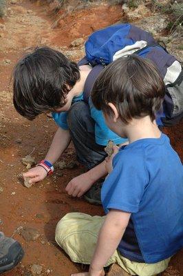 Dan teaching Finn