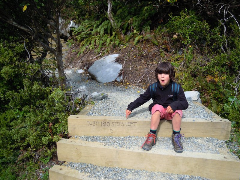 Steps to Sealy tarns