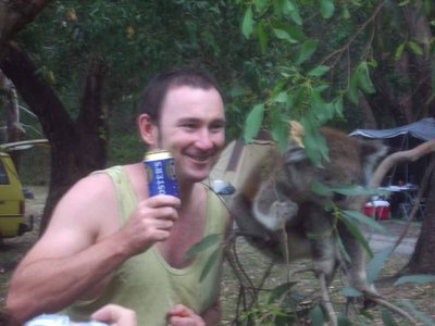 Drunk Aussie with a Koala and a beer