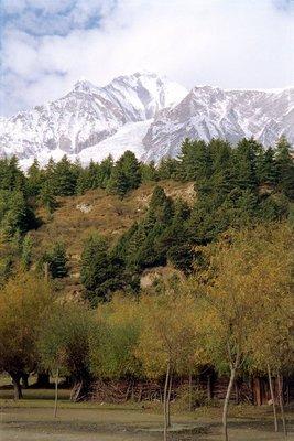 Larjung, ледник Dhaulagiri