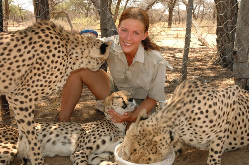 Cheetahs and me