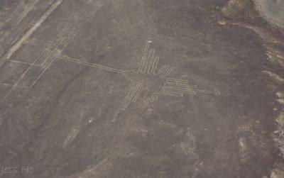 huacachina-nazca-21.jpg