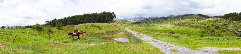 large_cuzco-65.jpg