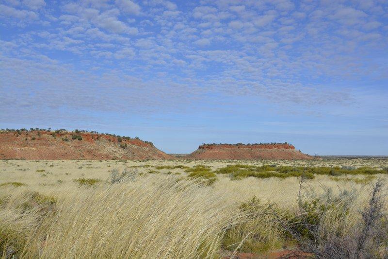 large_12_Landscape.jpg