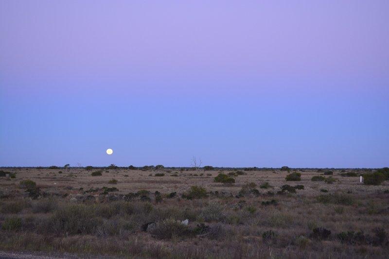 large_15_Full_Moon.jpg