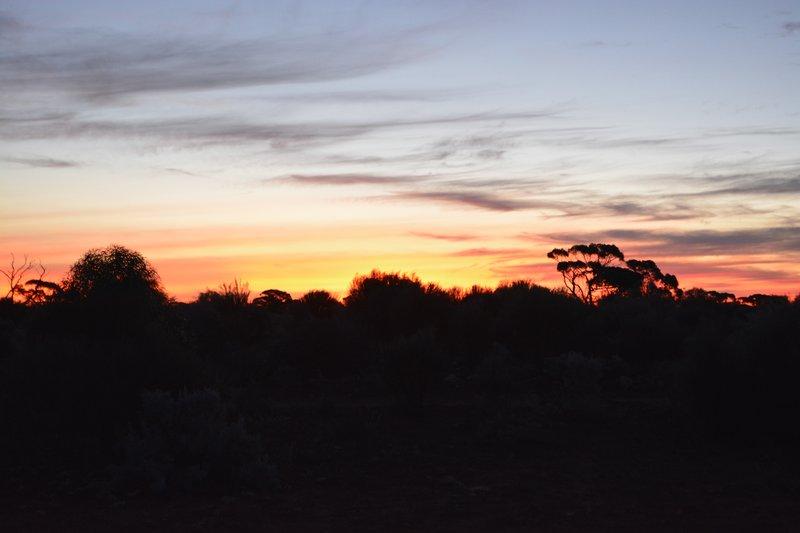 large_9_Sunset.jpg