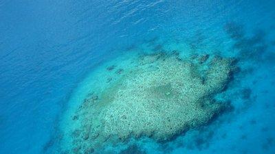Fiji Blue Lagoon