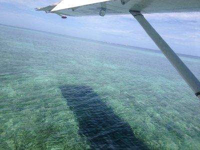 """""""Landing"""""""