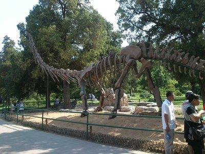 A dinosaur in the park