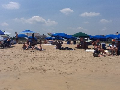 Hello, Poodle, from Rehoboth Beach, DE