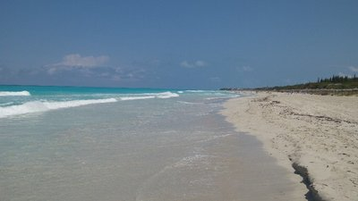 The Beach at hotel blau varadero