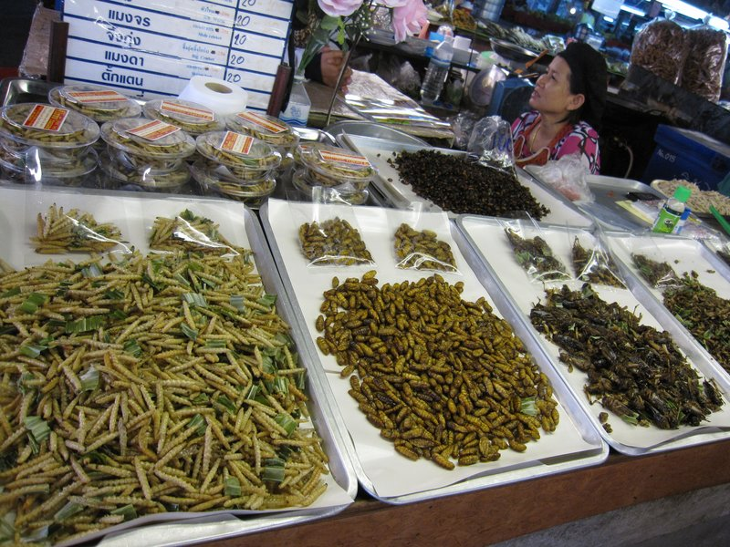 Insects in the market