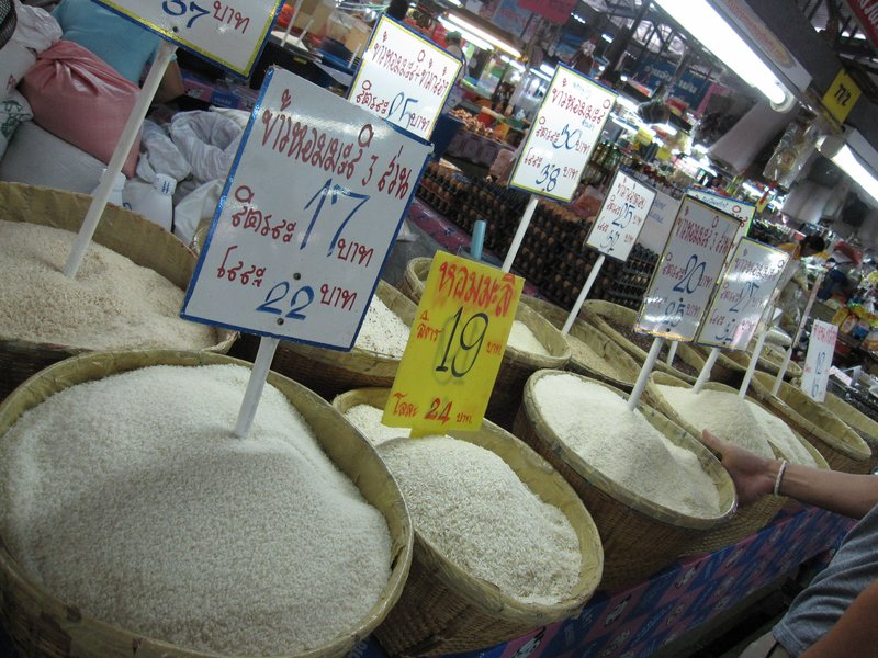 So many kinds of rice!