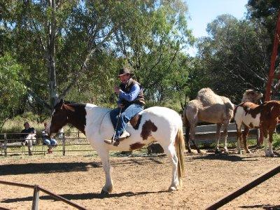 2012 July 28 Horseman Show 1 Longreach