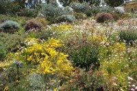 2012_Oct_3..ings_Park_5.jpg