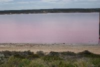 2012 Sep 22 Pink Lake Port Gregory 3