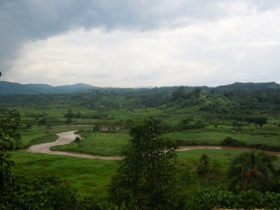 Drive from Kibale to Bwindi