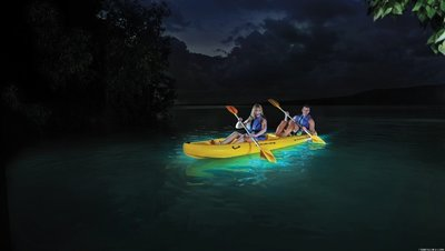 Kayaking-on-the-Bioluminscent-Bay