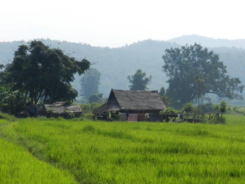 large_village.jpg
