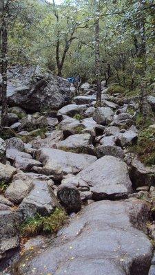 Typical terrain......