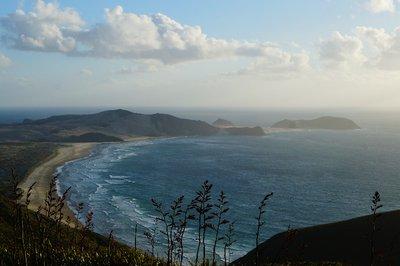 Cape Reinga -  (2)