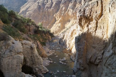 Colca canyon (56)
