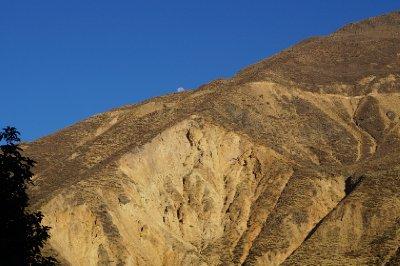 Colca canyon (59)