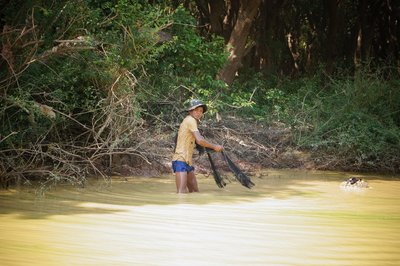 Kampong Phluk - Flooded forest (22)