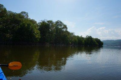Laguna de Manialtepec (32)