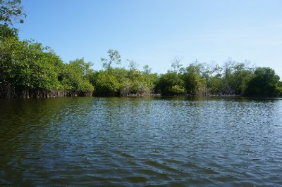 Laguna de Manialtepec (8)