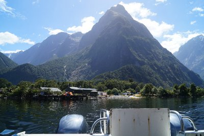Milford Sound Scuba Diving (1)