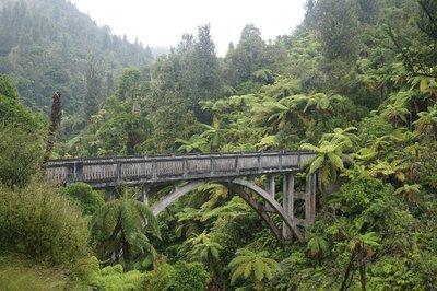 Whanganui River trip (26)