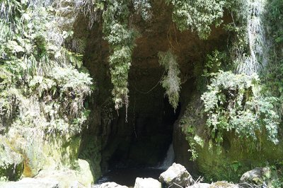 Whanganui River trip (62)