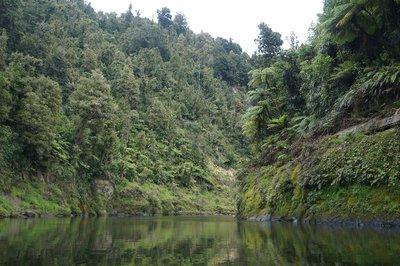 Whanganui River trip (6)