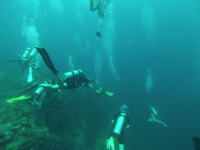 Some of the dive sites can actually be really crowded...