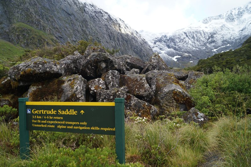 Gertrude Saddle Hike (4)