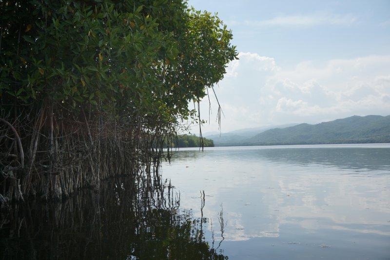 Laguna de Manialtepec (26)
