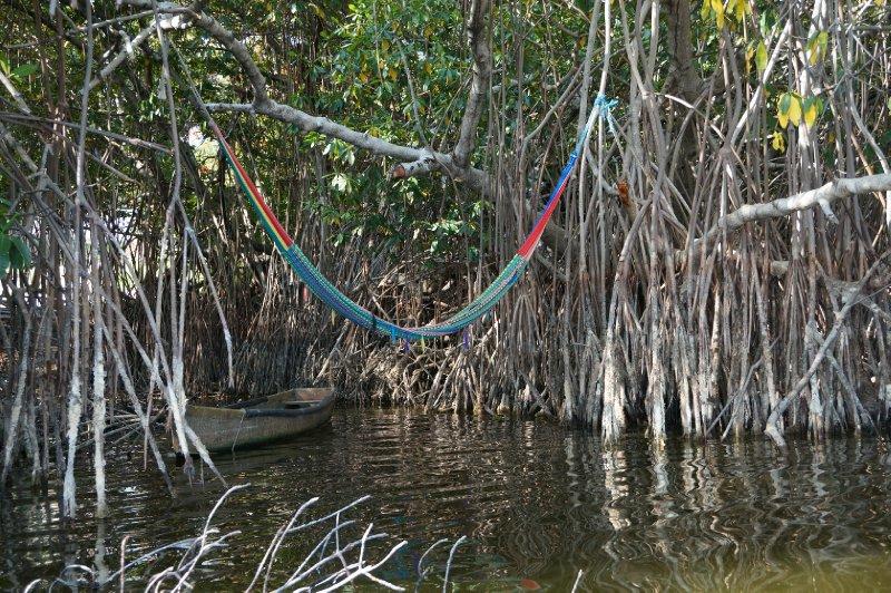 Laguna de Manialtepec (35)