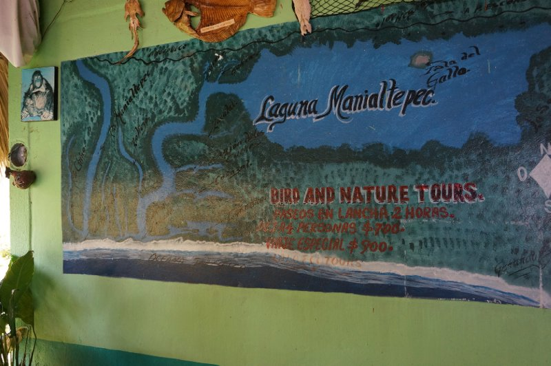 Laguna de Manialtepec (36)