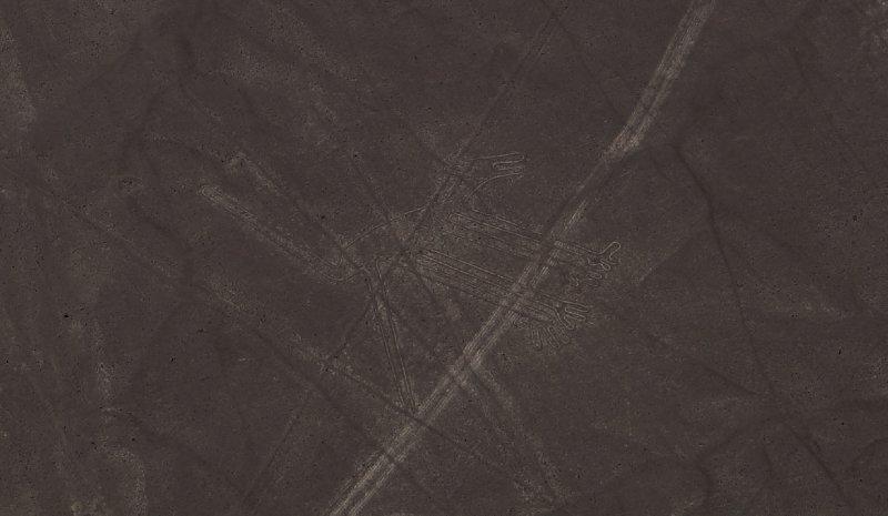 Nazca lines - Dog