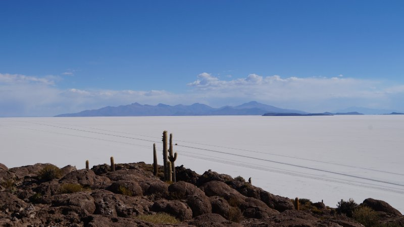 Picture taken from the Incahuasi island in the middle of the desert