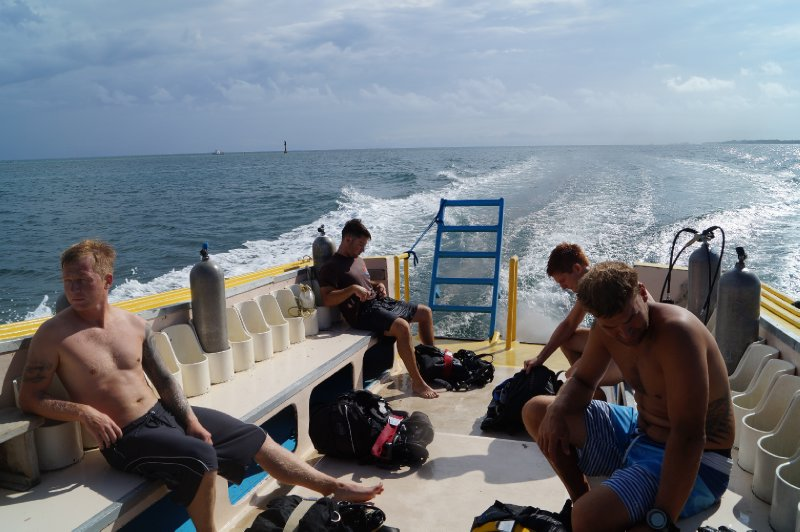 Everybody is quite tired after diving