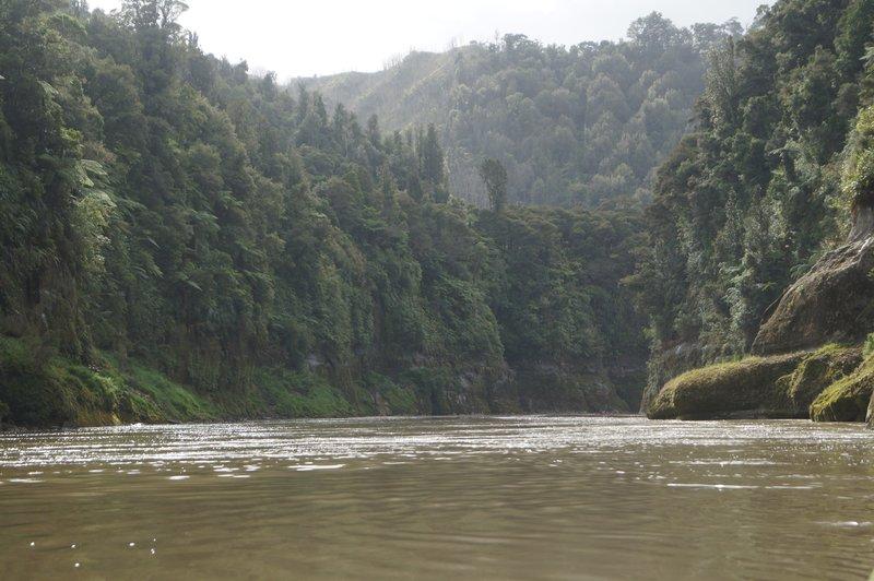Whanganui River trip (48)
