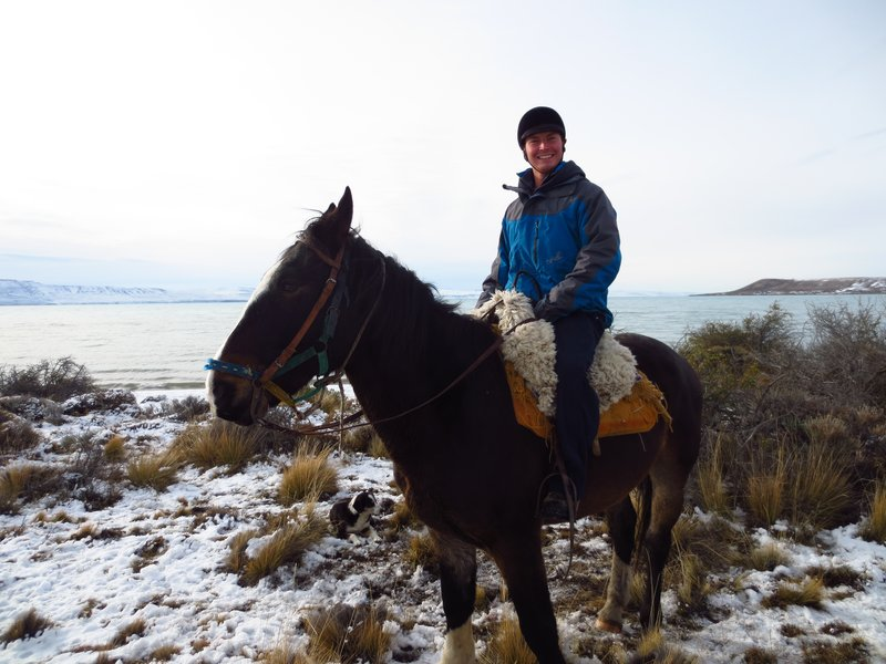 On echo the horse