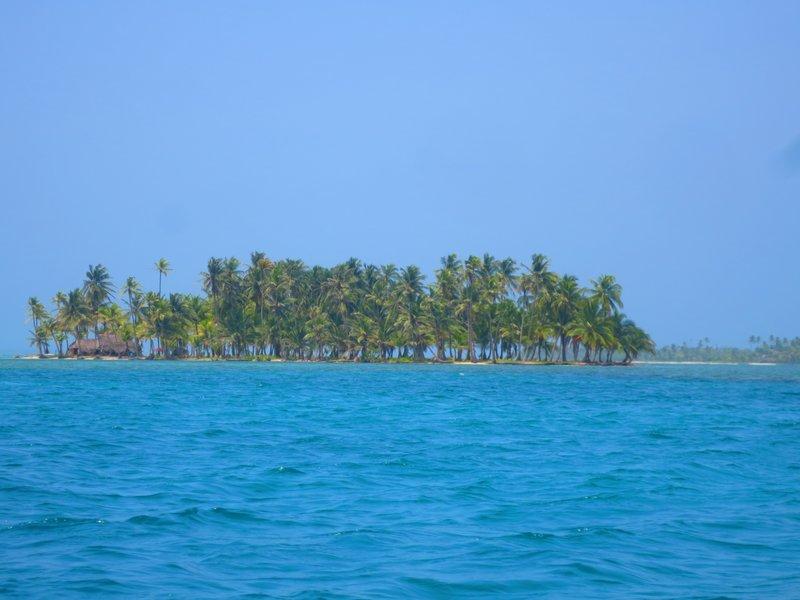 coconut tree islands