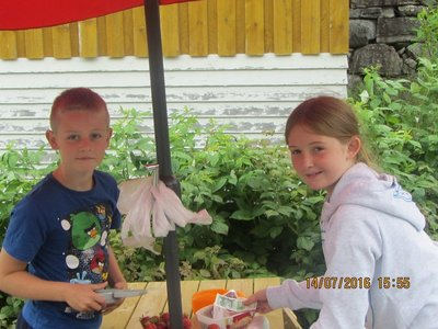 Buying Strawberries from two children near Geiranger
