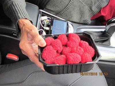 Fresh and  tasty Raspberries