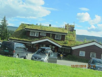 Grass on the roof-Near Mo I Rana